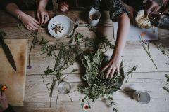Jak preparaty ziołowe wpływają na nasze zdrowie